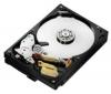 HITACHI Pevný disk Deskstar 7K1000.C - 500 GB - 7200 RPM - 16 MB - SATA-300 (HDS721050CLA362)
