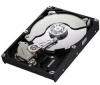SAMSUNG Pevný disk SpinPoint F3 Desktop Class HD103SJ - 3.5