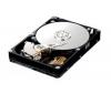 SAMSUNG Pevný disk SpinPoint HD321KJ séria T166 - 3,5
