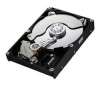 SAMSUNG Pevný disk SpinPoint HD502HJ - 3,5