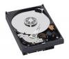 WESTERN DIGITAL Pevný disk WD Caviar Green - 800 GB - 7200 RPM - 64 MB - SATA-300 (WD8000AARS)