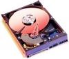 WESTERN DIGITAL WD Caviar Blue - 250GB - 7200RPM - 16 MB 250 GB SATA 2 (verzia bulk) (WD2500AAKS)
