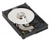 WESTERN DIGITAL WD Caviar Blue - Pevný disk - 320 GB - interný - 3.5